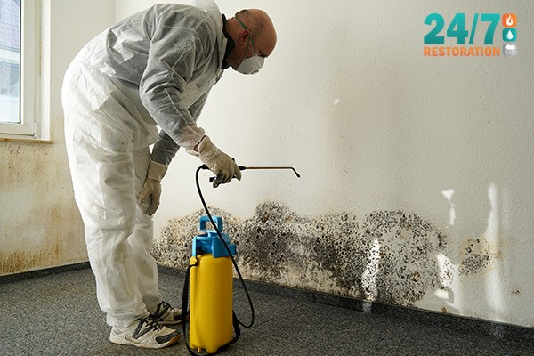 Calgary Mold Remediation