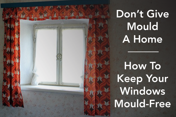 Mold Removal in Calgary: Steamy Windows, A Mold Hot Spot