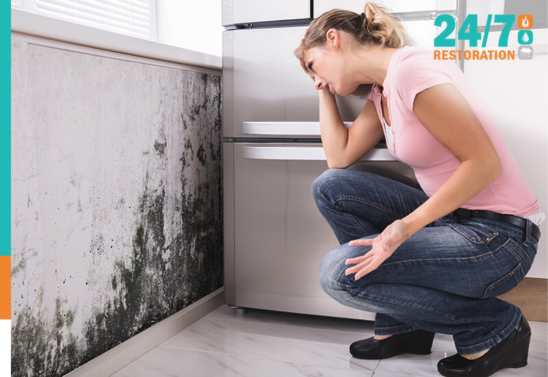 24 7 Restoration - Blogs - Tips on How to Control Mold in Your Home_
